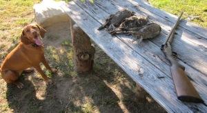 grouse2011